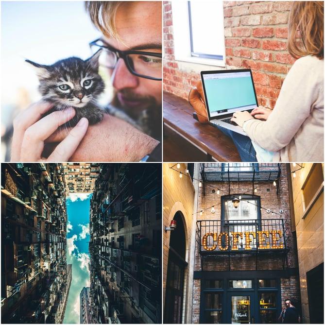 Exemple de photos libres de droits StockSnap.io