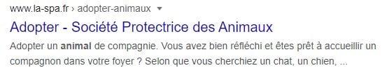 résultat de recherche google SPA
