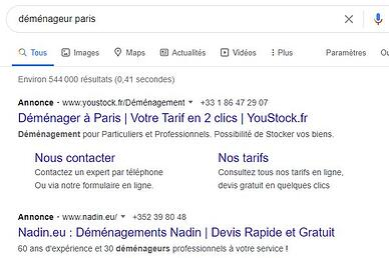 recherche google déménageur paris