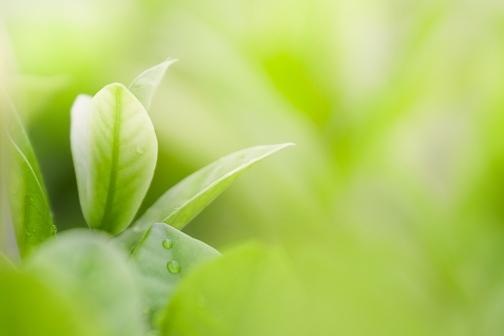 HubSpot, l'écosystème quiaccompagne les entreprises dans leur croissance