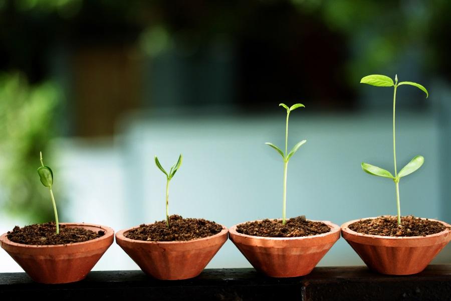 Guide pour l'élaboration de programmes de lead nurturing efficaces