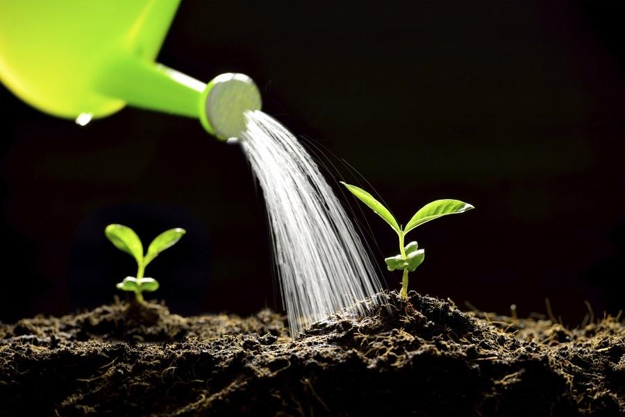 5étapes pour créer des campagnes de lead nurturing qui génèrent des résultats