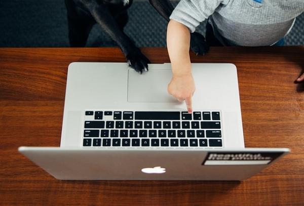 un chien et un enfant devant un ordinateur